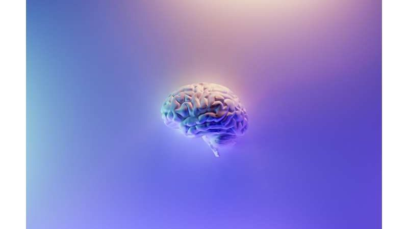 New guidelines for the diagnosis and treatment of brain metastases